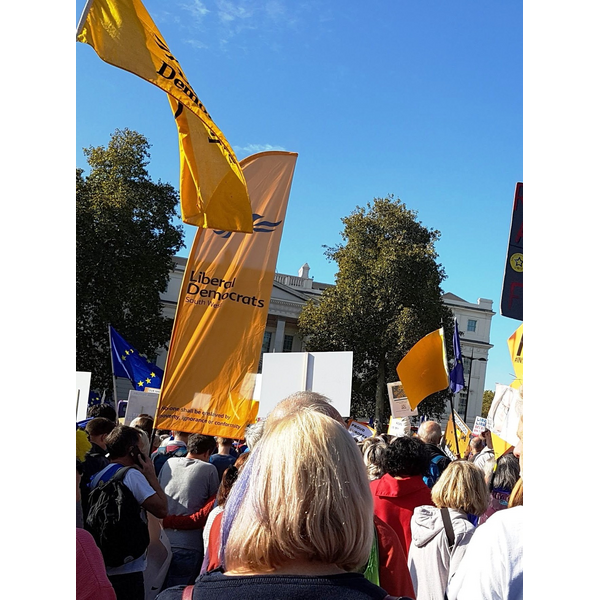 Some of the Lib Dems on People's Vote march Oct 2018